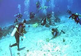 Aqua Marine Scuba Cozumel Trip